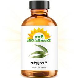Eucalyptus  Best Essential Oil