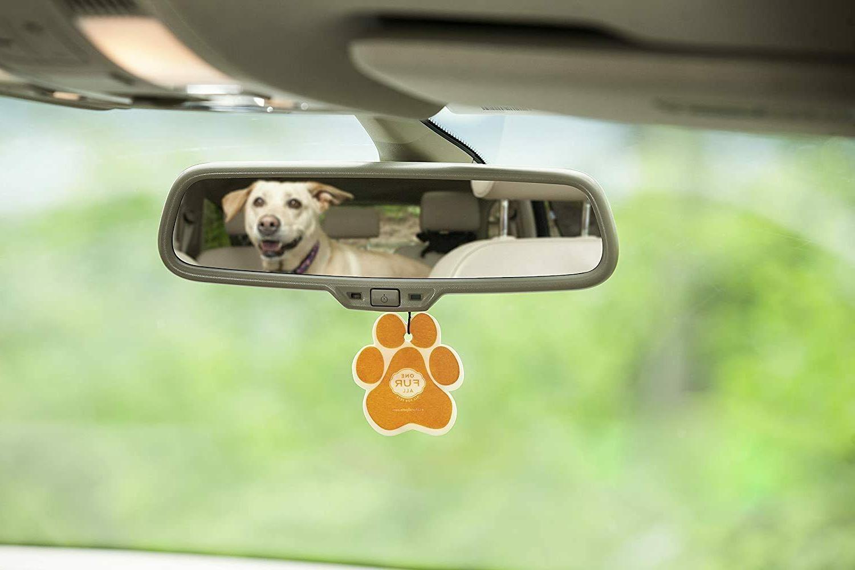 Pet House Car Air Freshener, – Mandarin Non-Toxic